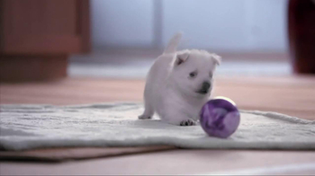 Banfield Pet Hospital TV Spot, 'Molly' - Thumbnail 1