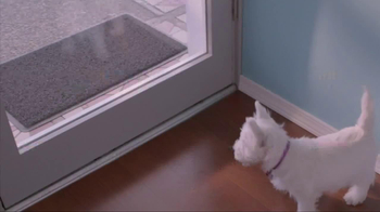 Banfield Pet Hospital TV Spot, 'Molly' - Thumbnail 2