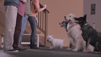 Banfield Pet Hospital TV Spot, 'Molly' - Thumbnail 4