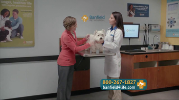 Banfield Pet Hospital TV Spot, 'Molly' - Thumbnail 5