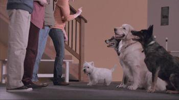 Banfield Pet Hospital TV Spot, 'Molly'