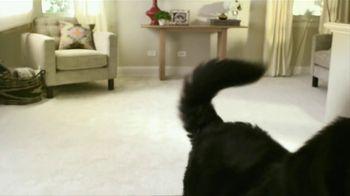 Bissell TV Spot, 'Dog Strut' - Thumbnail 3