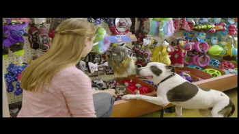 PetSmart TV Spot For The Toy Chest Aisle - Thumbnail 2