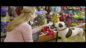 PetSmart TV Spot For The Toy Chest Aisle - Thumbnail 3