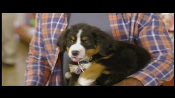 PetSmart TV Spot For The Toy Chest Aisle - Thumbnail 5