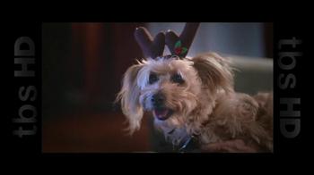 PetSmart Celebrate the Savings TV Spot, 'Nylabone'