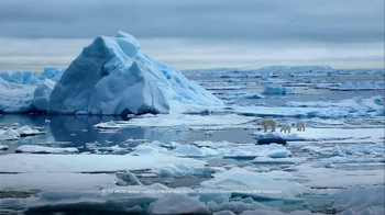 Coca-Cola Arctic Home TV Spot, 'Sense of Home' - Thumbnail 5