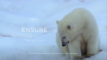 Coca-Cola Arctic Home TV Spot, 'Sense of Home' - Thumbnail 6