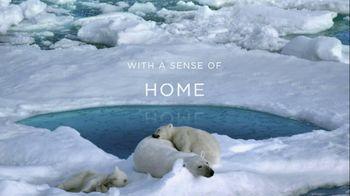 Coca-Cola Arctic Home TV Spot, 'Sense of Home'