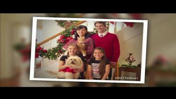 PetSmart Winter Welcome Sale TV Spot, 'Kong' - Thumbnail 4