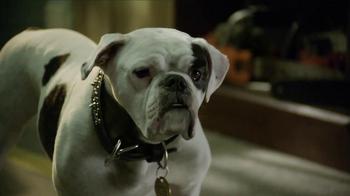 Santa Paws 2: The Santa Pups TV Spot  - Thumbnail 7