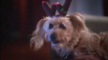 PetSmart Celebrate the Savings TV Spot, 'Friskies and Purina' - Thumbnail 3