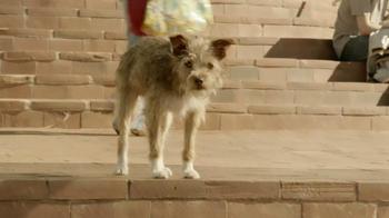 Motorola Droid Razr M TV Spot, 'Spanish Dog Translation' - Thumbnail 6
