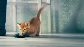 Garnier Fructis Fall Fight TV Spot, 'Hairball'