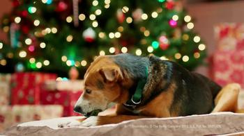 Greenies Canine Chews TV Spot, 'Christmas' - Thumbnail 6