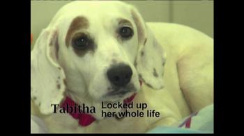 ASPCA TV Spot 'Help Wounded Pets' - Thumbnail 2