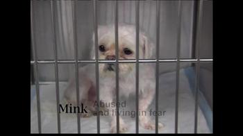 ASPCA TV Spot 'Help Wounded Pets' - Thumbnail 3