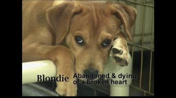 ASPCA TV Spot 'Help Wounded Pets' - Thumbnail 6