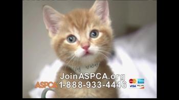 ASPCA TV Spot 'Help Wounded Pets' - Thumbnail 8