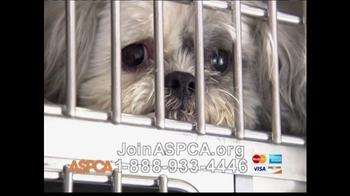 ASPCA TV Spot 'Help Wounded Pets' - Thumbnail 9