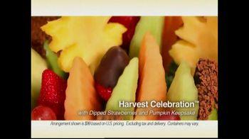 Edible Arrangements Harvest Celebration TV Spot