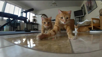GoPro HERO3 TV Spot, 'Laser Cats' - Thumbnail 4