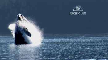 Pacific Life TV Spot, 'Whale' - Thumbnail 4