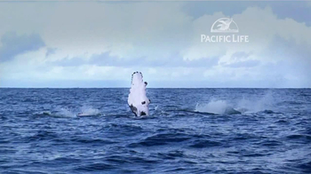 Pacific Life TV Spot, 'Whale' - Thumbnail 5