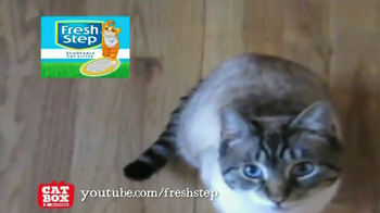 Fresh Step Litter with Carbon TV Spot, 'We Get Cats' - Thumbnail 8
