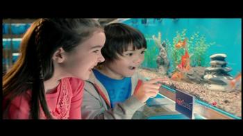 PetSmart Celebrate the Savings TV Spot, 'Pet Starter Kits' - Thumbnail 1