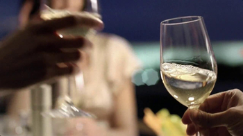 Terlato Wines International TV Spot, 'Celebrations' - Thumbnail 6