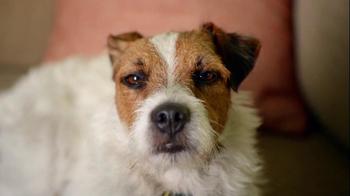 Bank Amerideals TV Spot, 'Talking To Dog' - Thumbnail 2