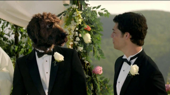 Pert Plus 2-in-1 TV Spot 'Wedding'
