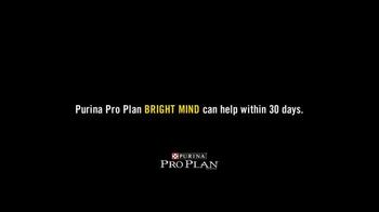 Purina Pro Plan Bright Mind TV Spot, 'Lady' - Thumbnail 4