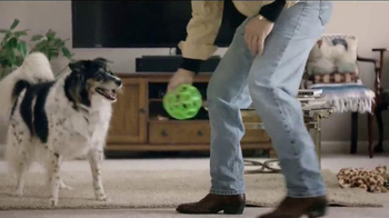 Purina Pro Plan Bright Mind TV Spot, 'Lady' - Thumbnail 7