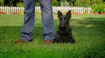 Scotts EZ Seed TV Spot, 'Grow Grass Anywhere' - Thumbnail 8