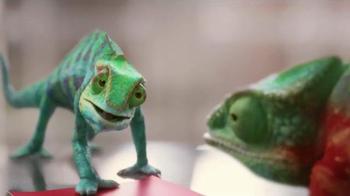 ACE Hardware TV Spot, 'Chameleons Agree to Agree' - Thumbnail 4