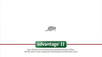 1-800-PetMeds TV Spot, 'Advantage II' - Thumbnail 5
