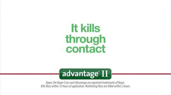 1-800-PetMeds TV Spot, 'Advantage II' - Thumbnail 6