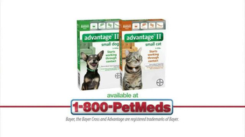 1-800-PetMeds TV Spot, 'Advantage II' - Thumbnail 7