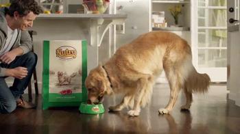 The Nutro Company Lamb & Rice Recipe TV Spot, 'At the Park' - Thumbnail 8