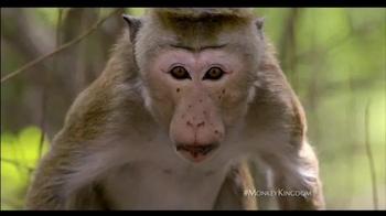Monkey Kingdom - Alternate Trailer 22