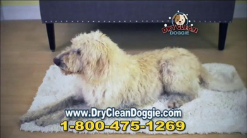 Dry Clean Doggie TV Spot, 'Wet Doggies' - Thumbnail 6