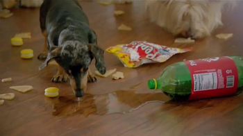 Pergo TV Spot, 'Dog Party' - Thumbnail 2