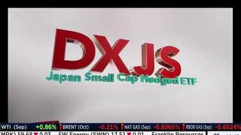 WisdomTree TV Spot, 'Japan Small Cap Hedged: DXJF' - Thumbnail 2