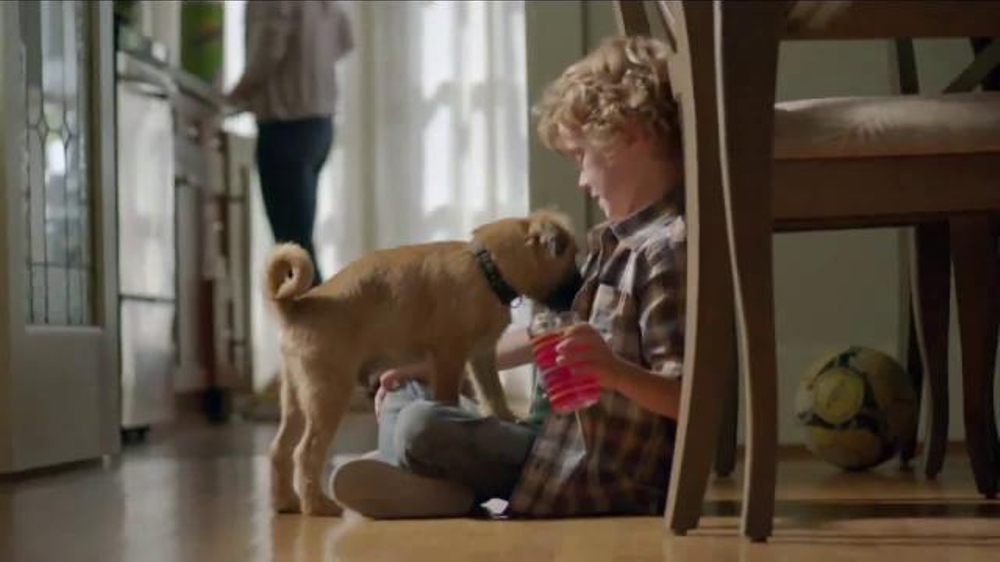 Bounty Tv Commercial More Dog Life Per Roll Ispot Tv