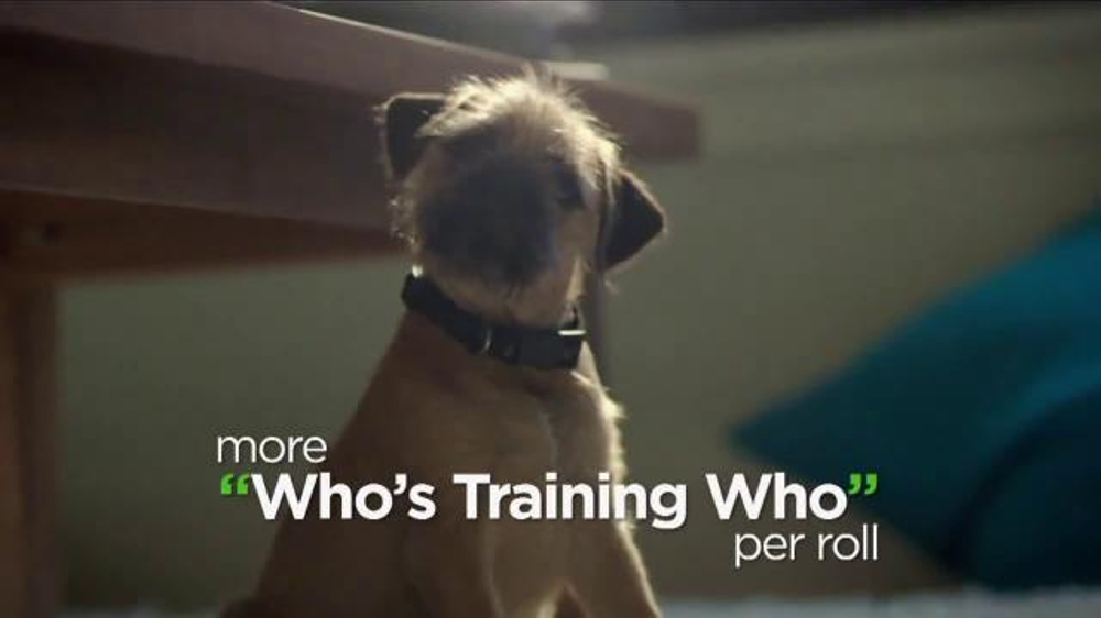 Bounty TV Commercial, 'More Dog Life Per Roll'