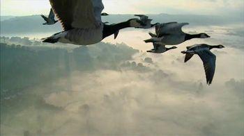 Verizon TV Spot, 'Geese' - 3185 commercial airings