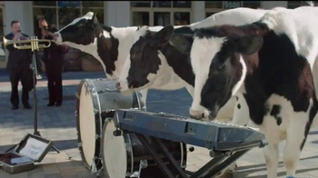 Chick-fil-A Frosted Lemonade TV Spot, 'Musical Cows' - 22 commercial airings