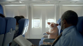 GEICO Mobile App TV Spot, 'When Pigs Fly' - Thumbnail 6
